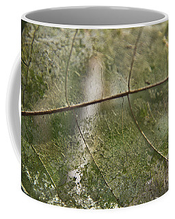 Coffee Mug featuring the photograph fallen Leaf by Debbie Cundy