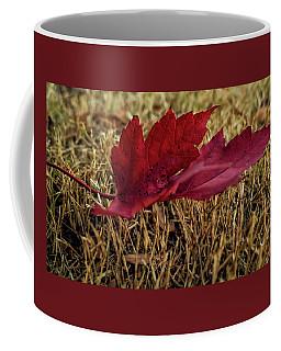 Fallen Leaf Coffee Mug by Elijah Knight