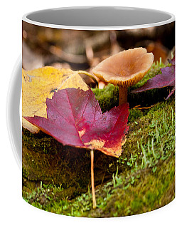 Fallen Leaves And Mushrooms Coffee Mug by Brent L Ander