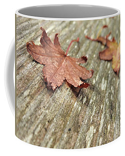 Coffee Mug featuring the photograph Fallen Leaves by Peggy Hughes