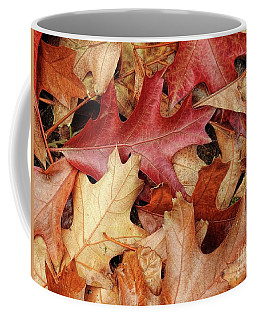 Coffee Mug featuring the photograph Fallen by Peggy Hughes