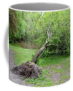 Fallen Tree Coffee Mug