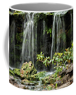 Falling Falls In The Garden Coffee Mug by Iris Greenwell