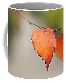 Falling For Fall Coffee Mug