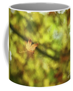 Coffee Mug featuring the photograph Falling by Peggy Hughes