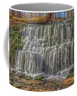 Falling Water Coffee Mug