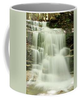Falling Waters Coffee Mug