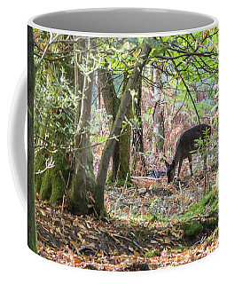 Fallow Deer, Supper Time Coffee Mug