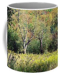 Fallow Meadow Coffee Mug