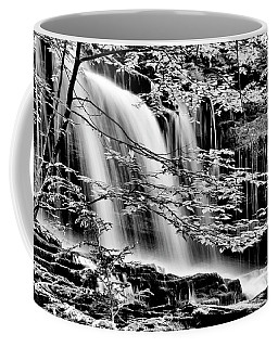 Falls And Trees Coffee Mug