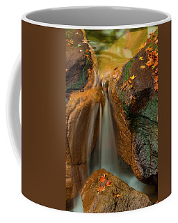 Falls In Motion Coffee Mug