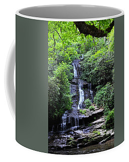 Falls Near Bryson City Coffee Mug