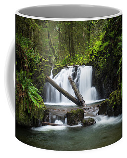 Falls On Canyon Creek Coffee Mug