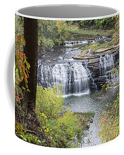 Falls Through The Trees Coffee Mug