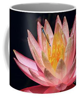 Familiar Bluet Damselfly And Lotus 2 Coffee Mug