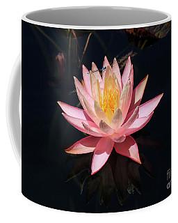 Familiar Bluet Damselfly And Lotus  Coffee Mug