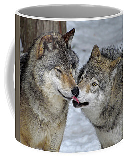 Coffee Mug featuring the photograph Familiar by Tony Beck
