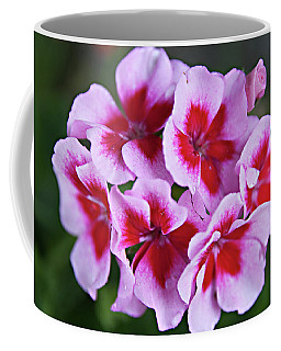 Coffee Mug featuring the photograph Family by Sherry Hallemeier