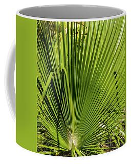 Fan Palm View 2 Coffee Mug by James Gay