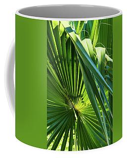 Fan Palm View 3 Coffee Mug by James Gay
