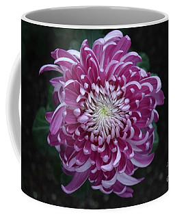 Fancy Chrysanthemum In Pink Coffee Mug