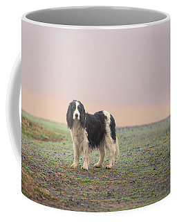 Farm Dog In Fog Coffee Mug