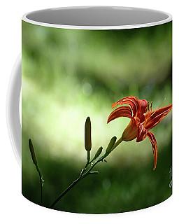 Farmington Lilies 2 Coffee Mug