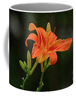 Farmington Lilly 3 Coffee Mug