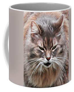Fat Cats Of Ballard 4 Coffee Mug