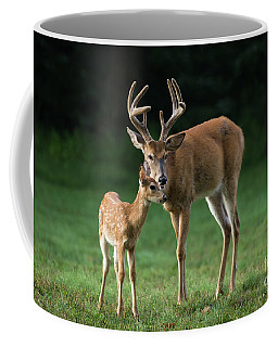 Coffee Mug featuring the photograph Fatherly Advice by Andrea Silies