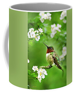 Fauna And Flora - Hummingbird With Flowers Coffee Mug