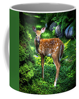 Coffee Mug featuring the photograph Fawn In The Garden by David Patterson