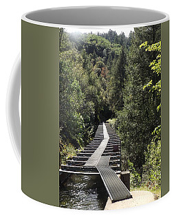 Coffee Mug featuring the photograph Feather River Flumes by Sara Raber