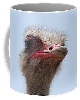 Feathers Standing Around The Head Of An Ostrich Coffee Mug