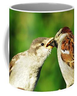 Feeding Baby Sparrow 3 Coffee Mug by Judy Via-Wolff