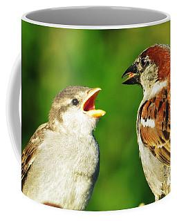 Feeding Baby Sparrows 2 Coffee Mug by Judy Via-Wolff