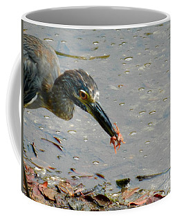 Feeding  Coffee Mug