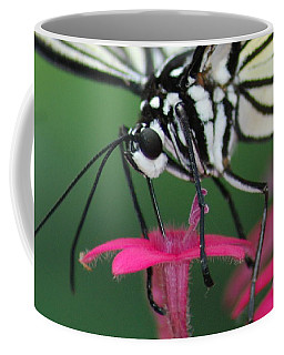 Coffee Mug featuring the photograph Feeding Rice Paper by Richard Bryce and Family