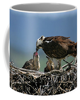 Coffee Mug featuring the photograph Feeding Time by Ronnie and Frances Howard