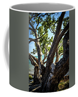 Feeling Nature Coffee Mug