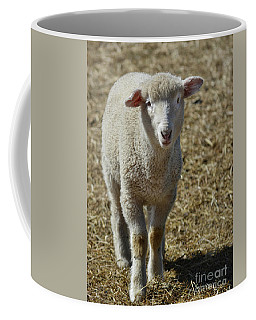 Feeling Sheepish Coffee Mug