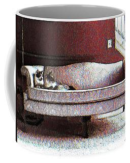 Coffee Mug featuring the photograph Felines Be Like... by Iowan Stone-Flowers