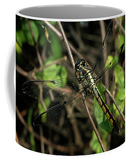 Female Bar-winged Skimmer Coffee Mug