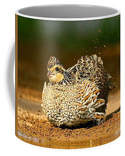 Female Bobwhite Quail  Coffee Mug by Myrna Bradshaw