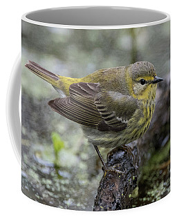 Female Cape May Warbler Coffee Mug