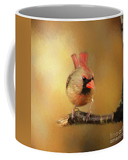 Coffee Mug featuring the photograph Female Cardinal Excited For Spring by Darren Fisher