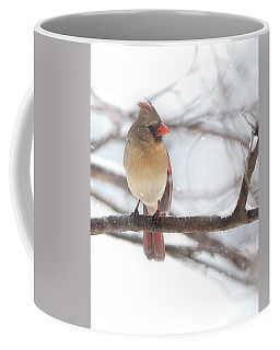 Female Cardinal In Snow Coffee Mug