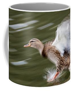 Female Lands  Coffee Mug