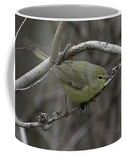 Female Orange Crowned Warbler Coffee Mug