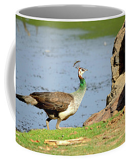 Female Peacock Coffee Mug by Manjot Singh Sachdeva